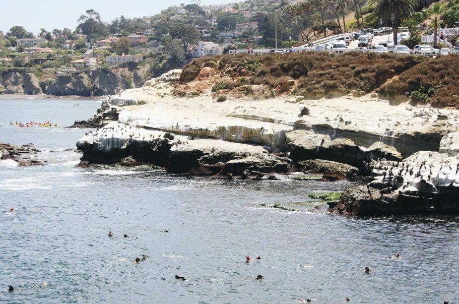 La Jolla spiaggia